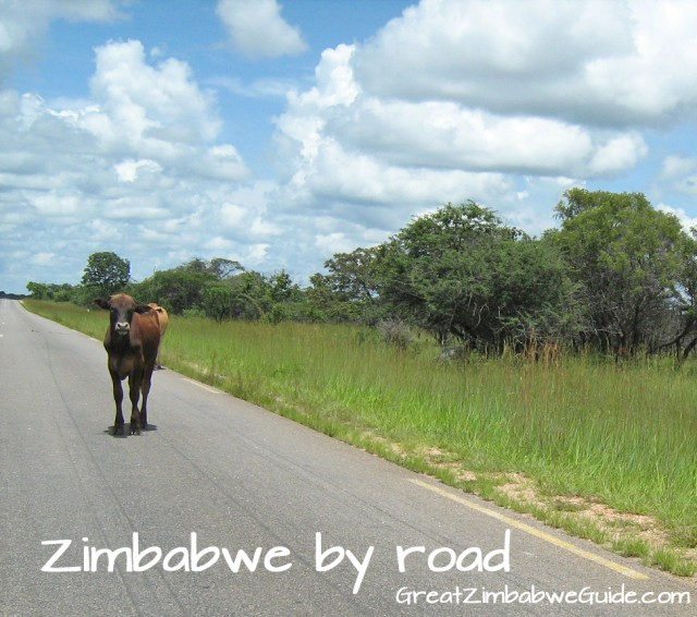 Zimbabwe road - from Great Zimbabwe Guide