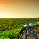 Accommodation Victoria Falls Safari Lodge 1