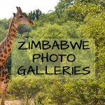 Zimbabwe photo galleries