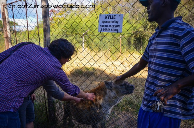 At Bally Vaughan Wildlife Sanctuary in Harare