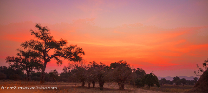 Mana Pools sunset