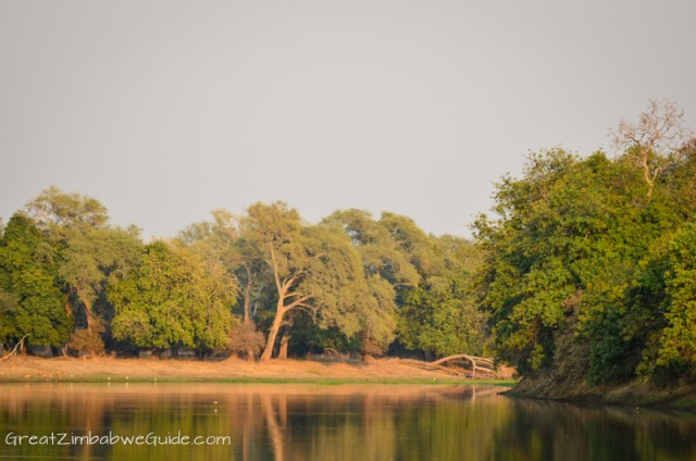 Mana Pools - Long Pool