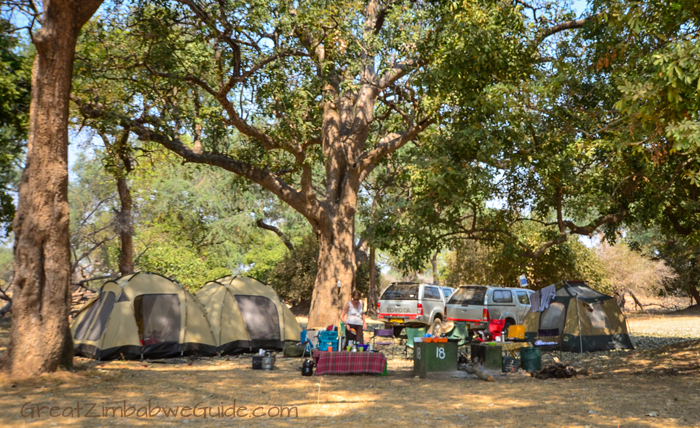 Mana Pools Campsite