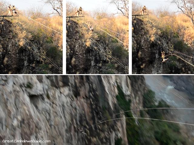 Wild Horizons gorge swing 001
