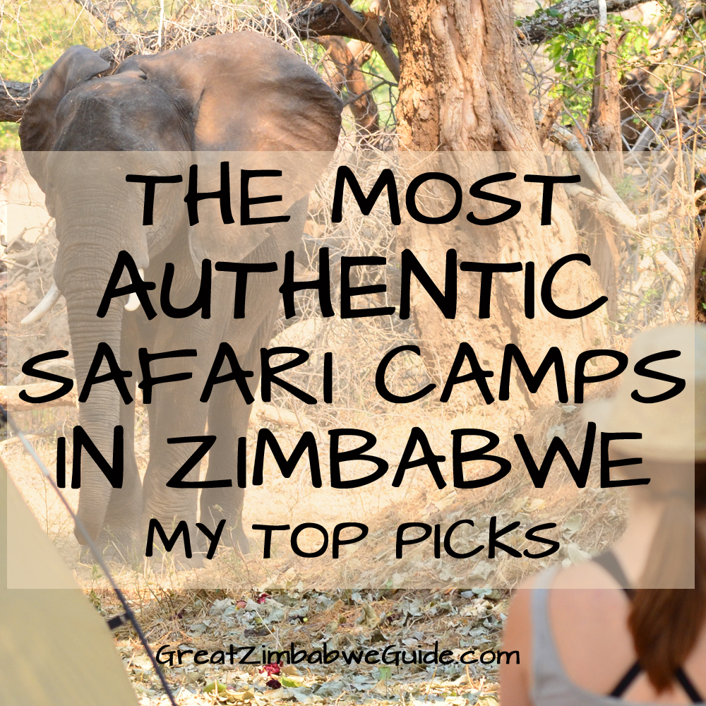 Authentic safari camps Zimbabwe Africa