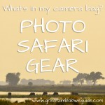 Photo safari gear