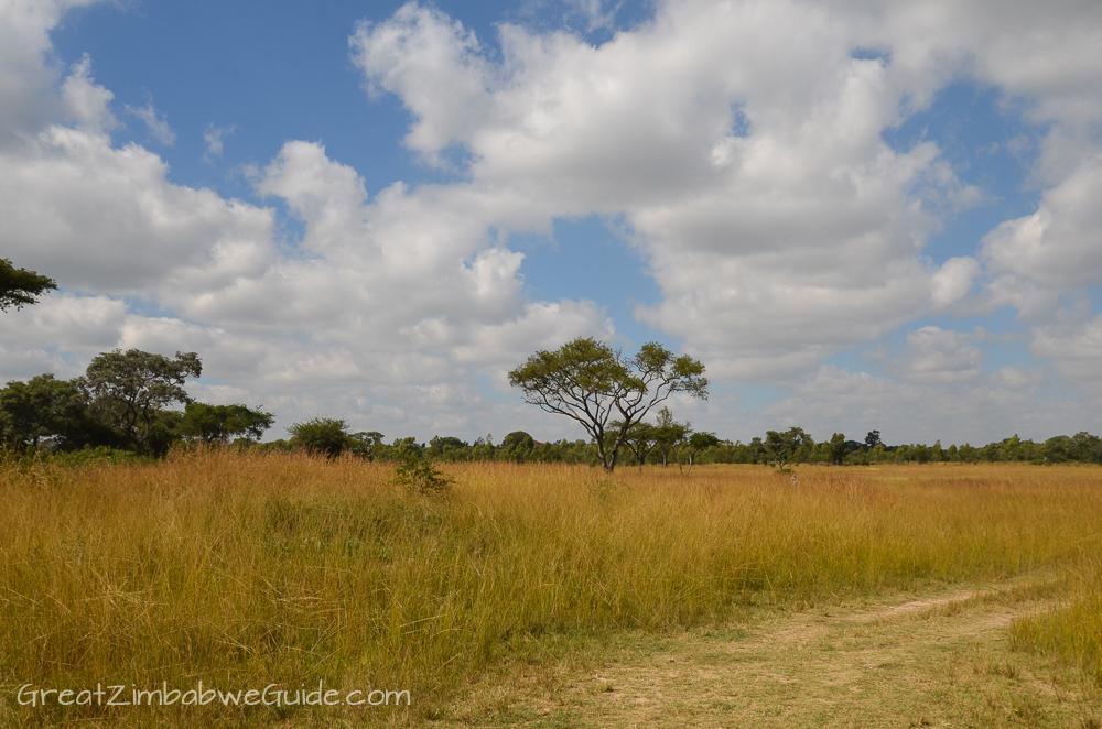 Mbizi Game Park Zimbabwe landscape