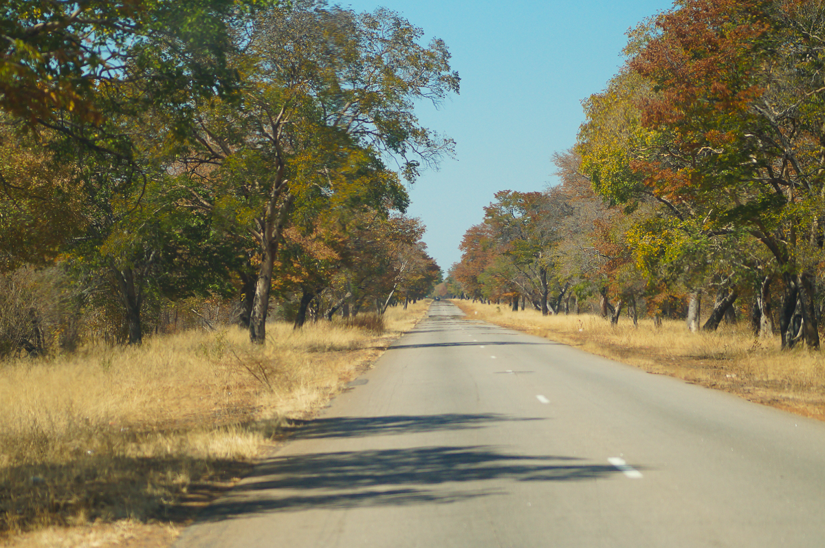 Zimbabwe Self Drive Travel Journal Part 1 Hwange