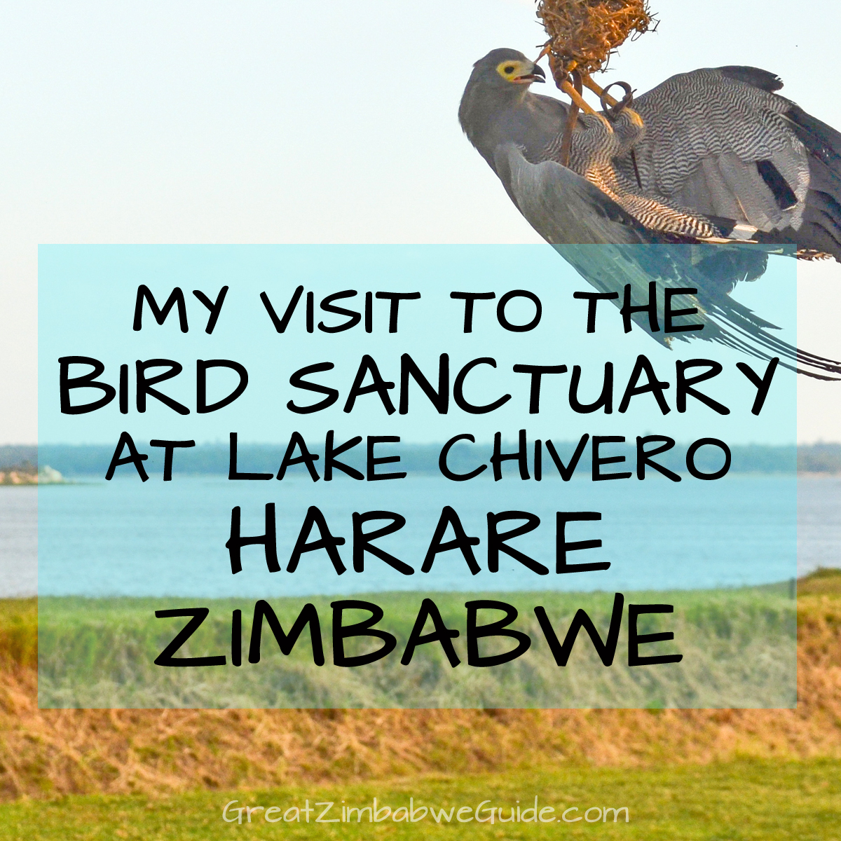 Bird Park Harare Zimbabwe Activities Review 2