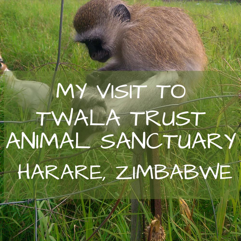 Twala Trust Harare Zimbabwe Africa