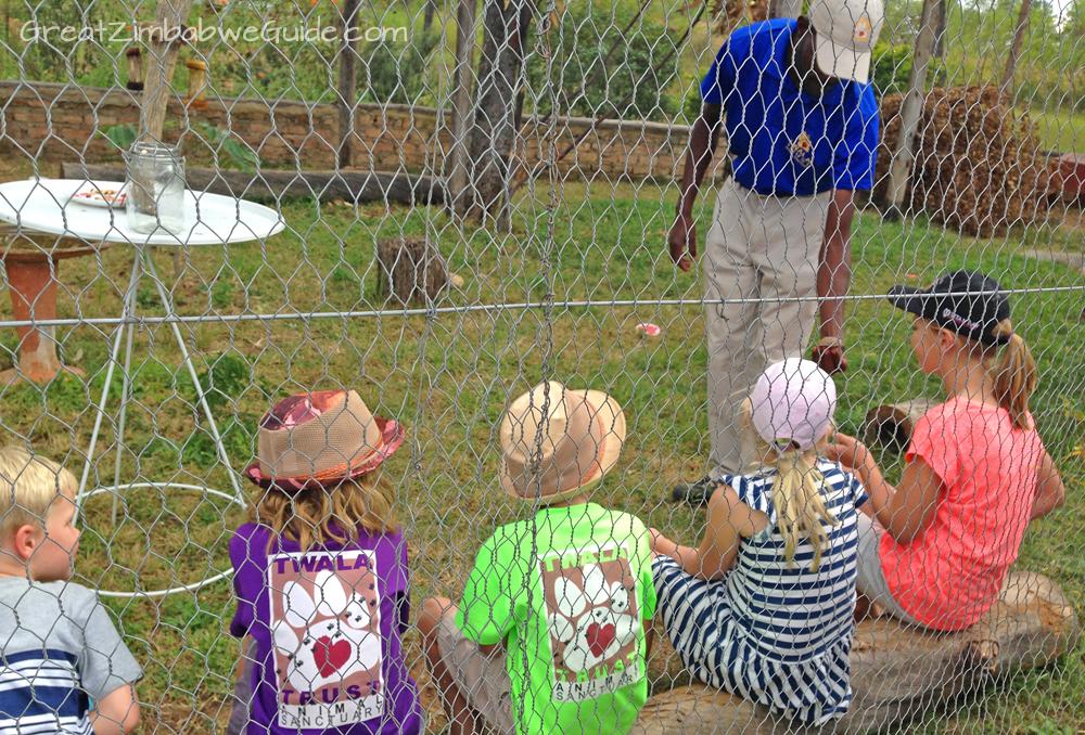 Twala Trust Lions Harare Zimbabwe
