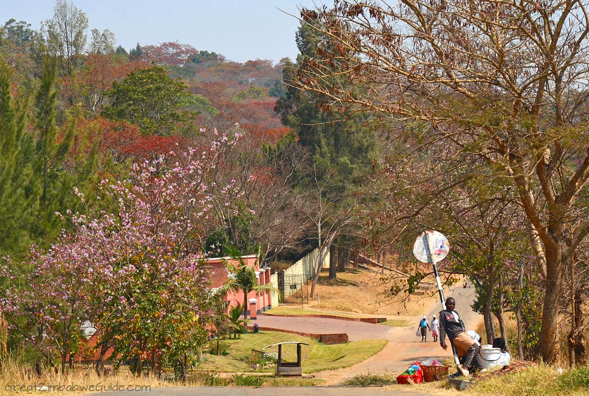 Harare Zimbabwe Urban Street