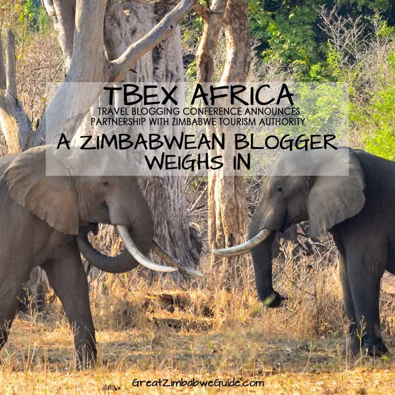 TBEX Africa Zimbabwe Blogger
