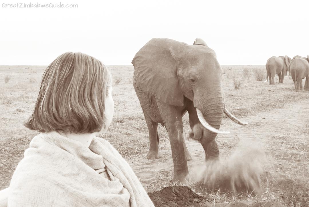 Great Zimbabwe Guide Wildlife Photography Kariba 11